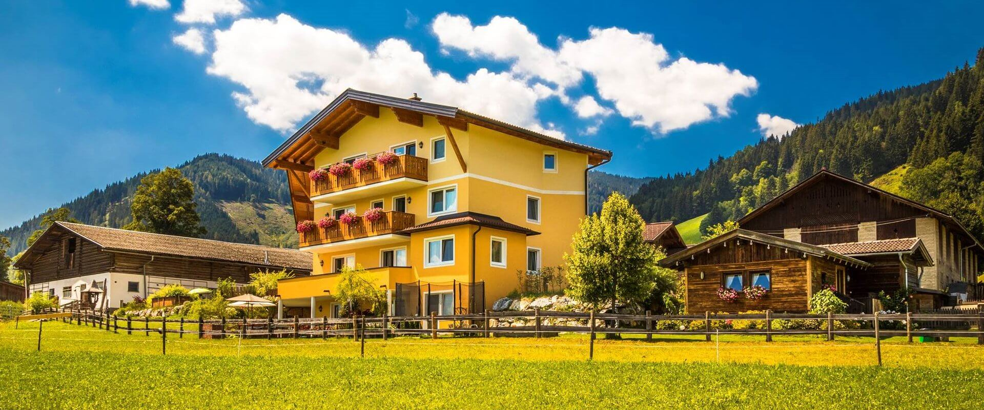 Urlaub auf dem Biobauernhof Unterlehengut in Flachau